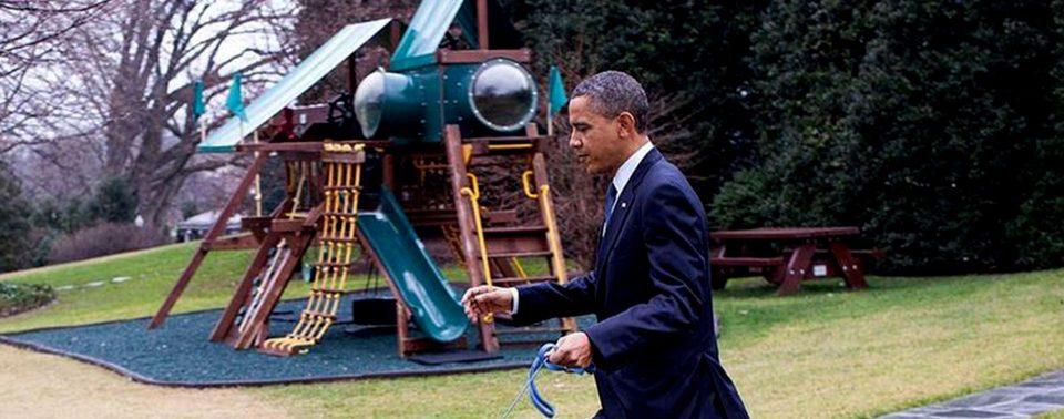 Bo, el perro que fue presidente